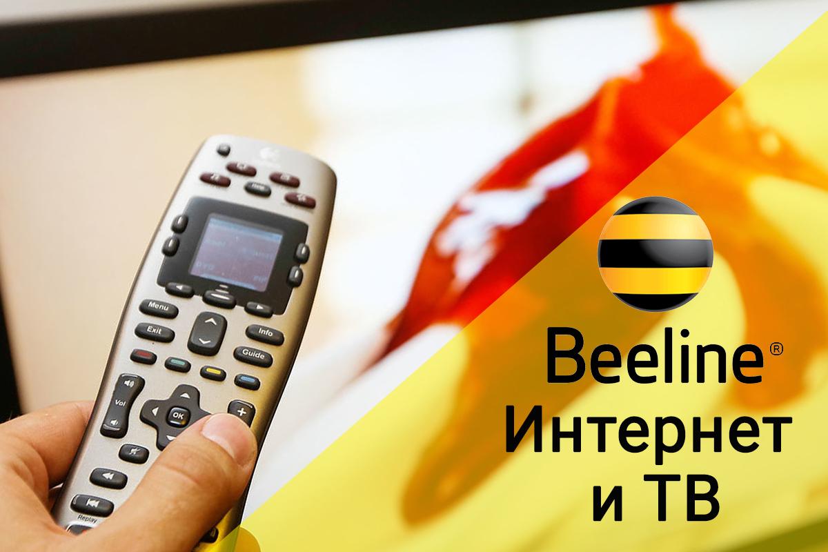 Билайн: интернет и ТВ за 1 рубль - обзор тарифа